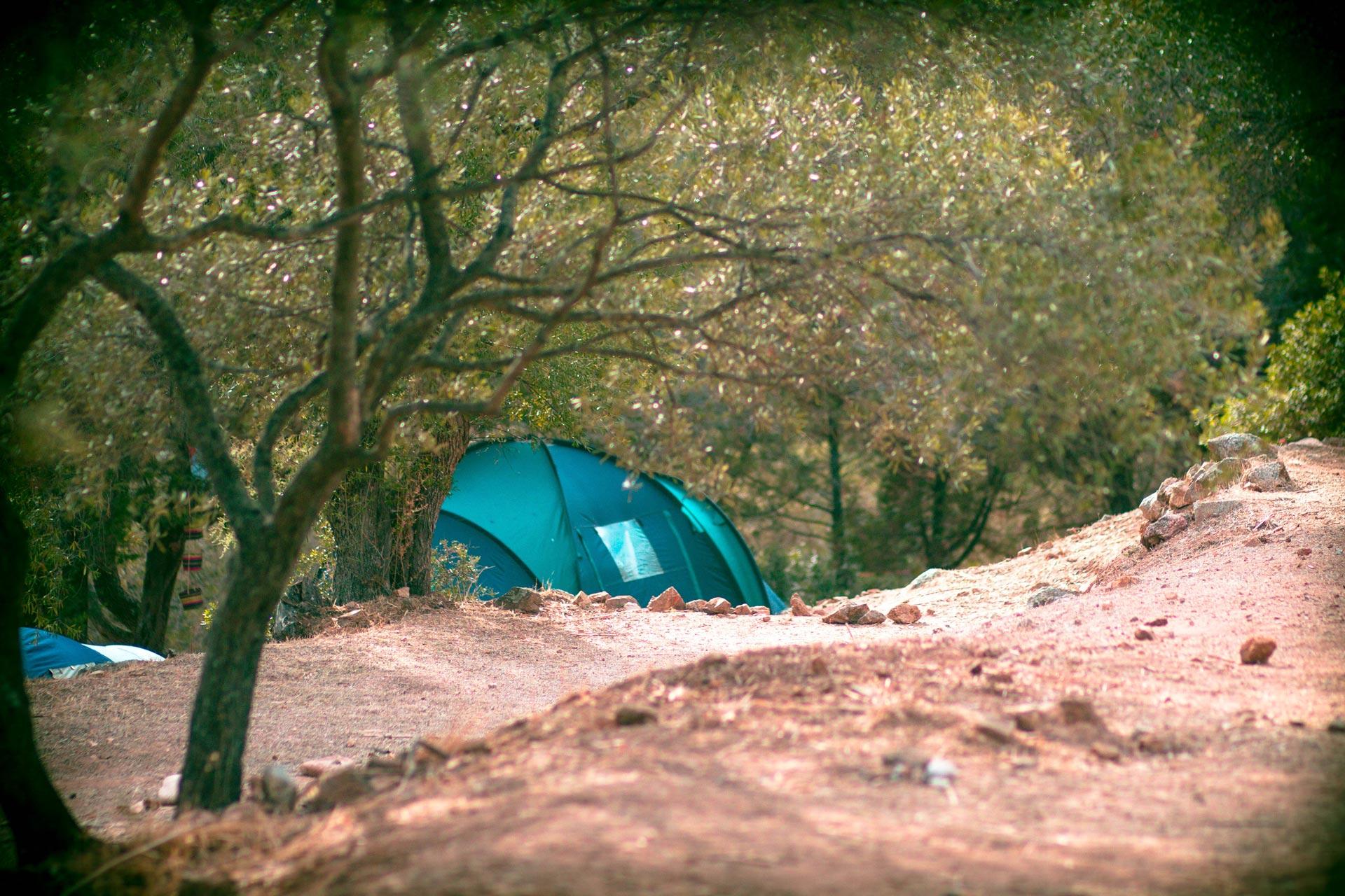 L'oriente-Camping-Porto-Pollo-Accueil